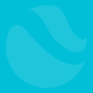 tbh_logo_onderdeel_faded (1)